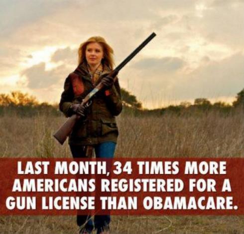 gun obamacare
